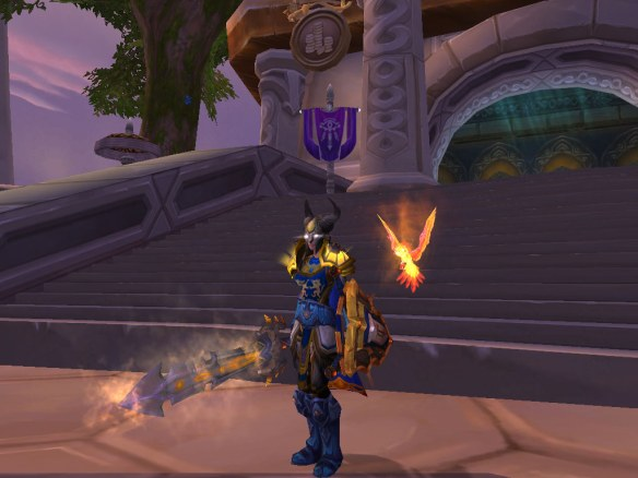 My paladin in her tanking transmog set