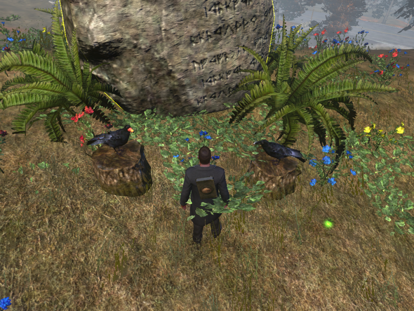Playing a game of riddles with Huginn and Muninn in The Secret World