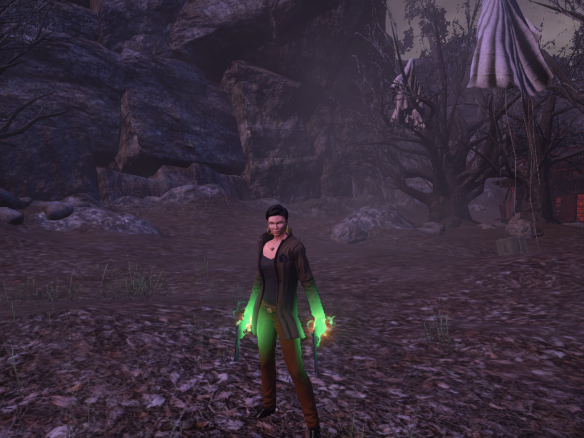 My Templar posing in The Secret World's Blue Mountain zone