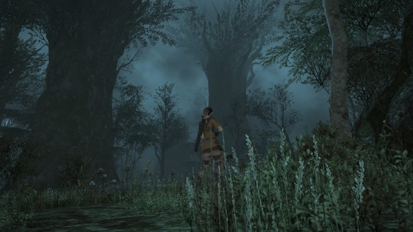 A foggy forest night in Final Fantasy XIV: A Realm Reborn