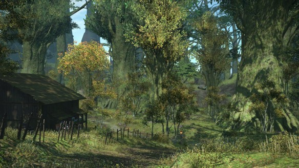 A forest vista in Final Fantasy XIV: A Realm Reborn