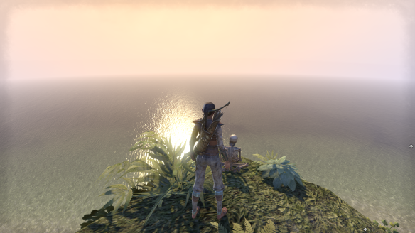 Watching the sun set over the ocean with one of Elder Scrolls Online's ubiquitous skeletons