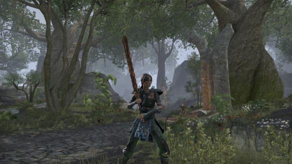 My Bosmer sorcerer in Elder Scrolls Online's Greenshade zone