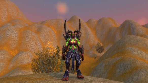 My demon hunter's metamorphasis form in World of Warcraft