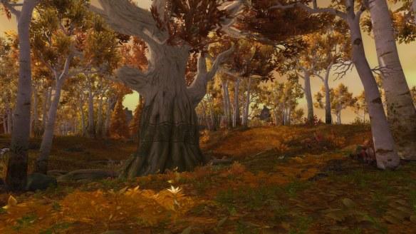 Stormheim's Runewood in World of Warcraft: Legion