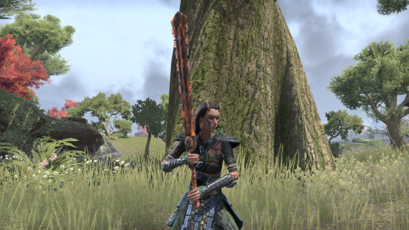 The new look of my Bosmer sorcer in Elder Scrolls Online