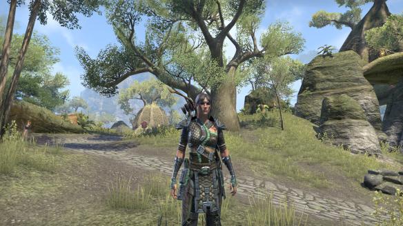 The original appearance of my Bosmer sorcerer in Elder Scrolls Online.