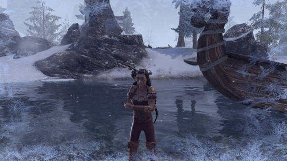 My sorcerer takes place in the Snow Bear Plunge as part of Elder Scrolls Online's New Life Festival
