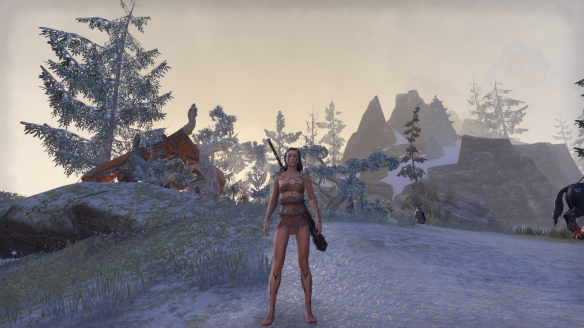 The Nordic Bather's Towel costume in Elder Scrolls Online