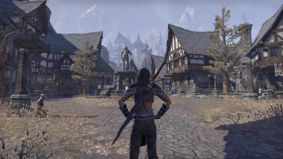 A Covenant town in Rivenspire in in Elder Scrolls Online