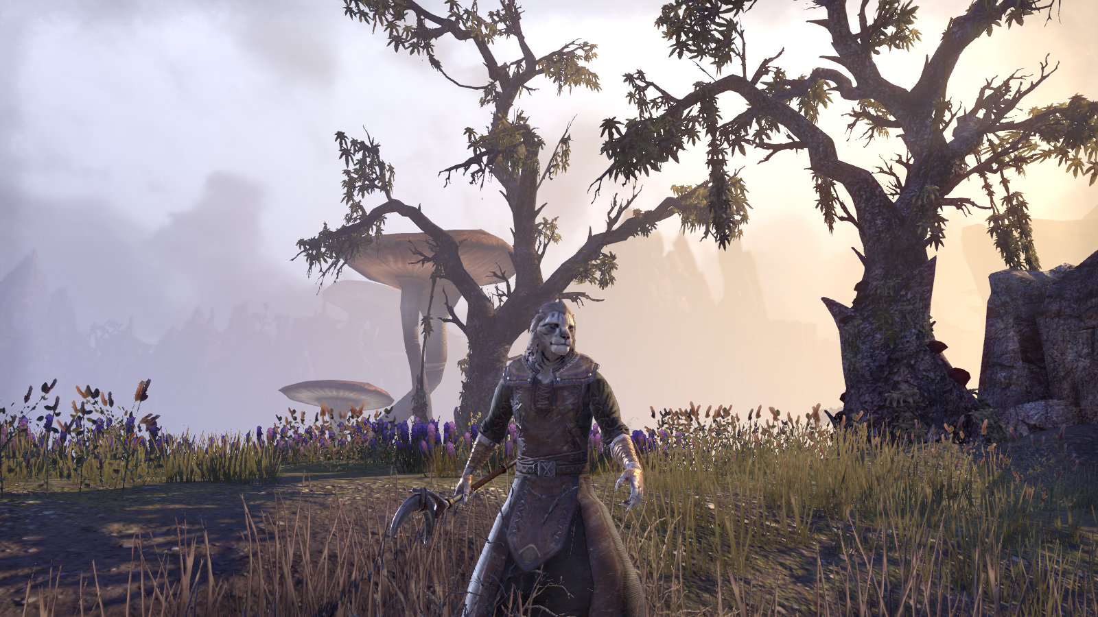 ESO: This One Is Just a Simple Khajiit | Superior Realities