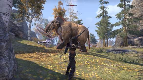MY sorcerer goes hunting in Elder Scrolls Online