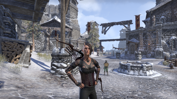 My Bosmer sorcerer looking stylish in Elder Scrolls Online