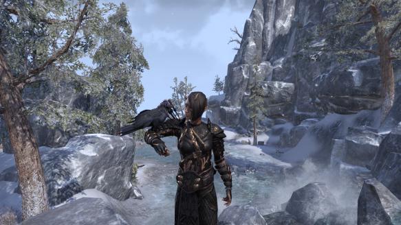 My sorcerer's latest new look in Elder Scrolls Online