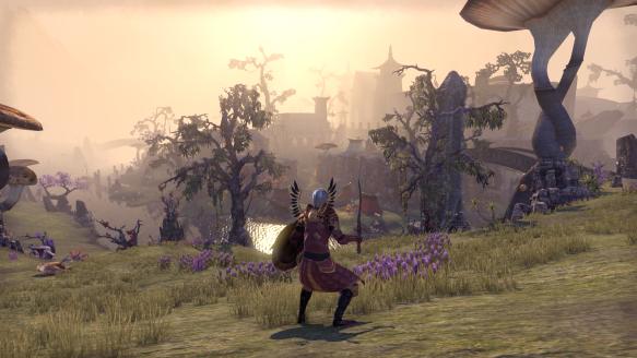 My templar overlooking Ebonheart in Stonefalls in Elder Scrolls Online
