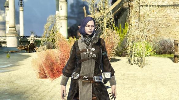 My Aqua Elf paladin in Bless Online