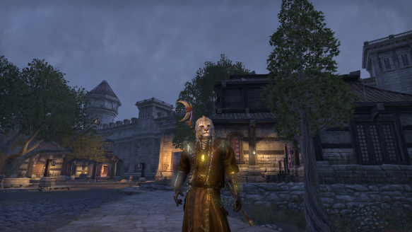 My Khajiit dragonknight in Elder Scrolls Online