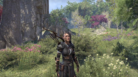 My Bosmer sorcerer in Elder Scrolls Online