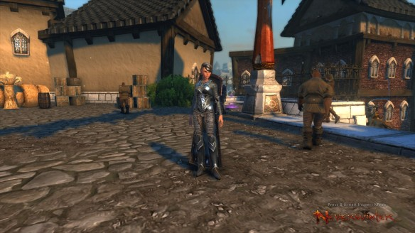 My Half-elf oathbound paladin in Neverwinter