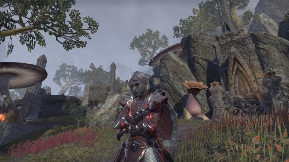 My templar in Elder Scrolls Online