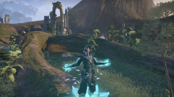My warden in Elder Scrolls Online