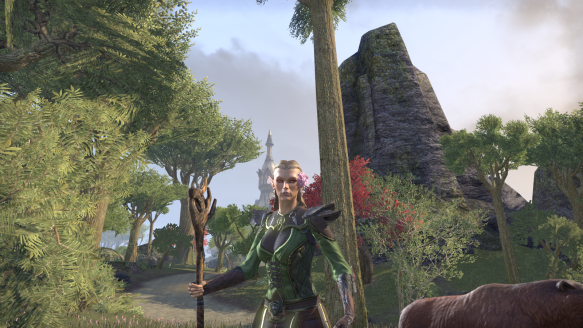 My warden's new look in Elder Scrolls Online