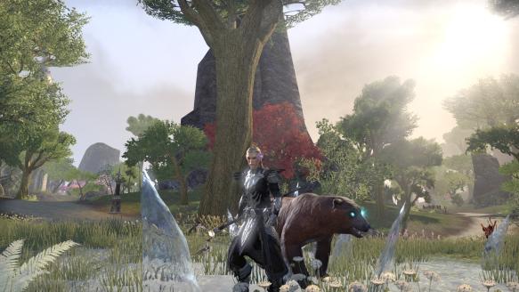 My High Elf warden's new look in Elder Scrolls Online
