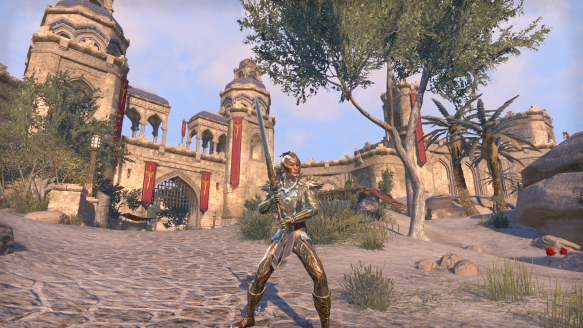 My sorcerer's new look in Elder Scrolls Online