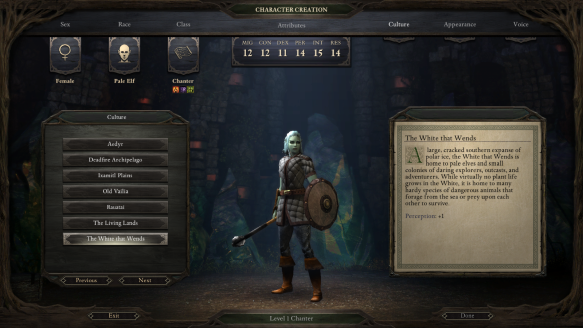 My character in Pillars of Eternity